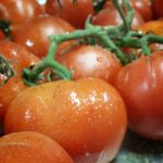 roasting-tomatoes-on-the-vine